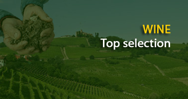 Top 100 Italian Wine Ambassador